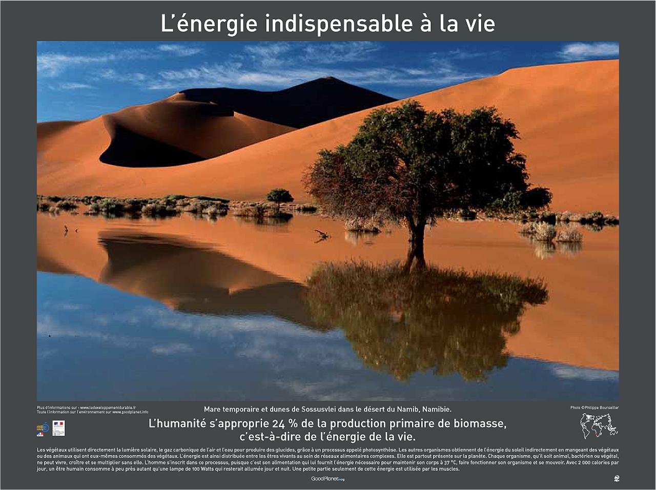 Red Sand Dunes Sossusvlei Namib Naukluft National Park Namibia