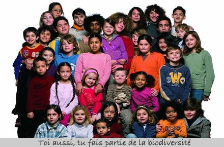 Oui, la biodiversité c'est la nature vivant